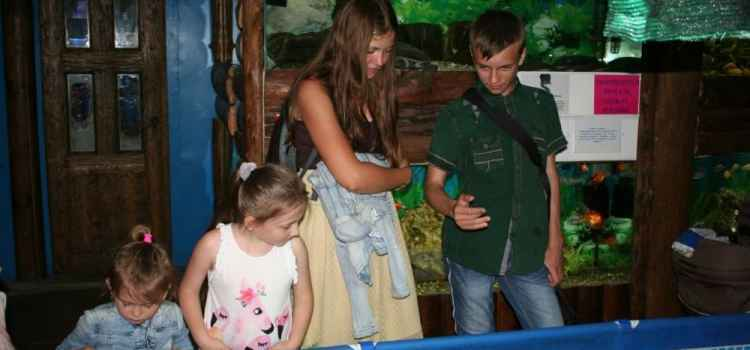 В День защиты детей Алуштинский аквариум посетили более 900 ребят