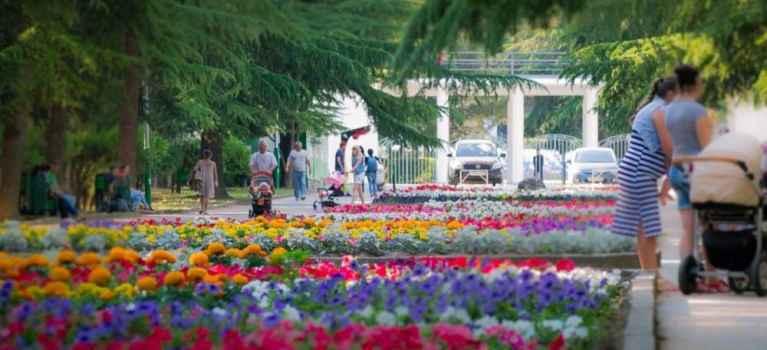 Аллея в Приморском парке Алушты украшена цветами