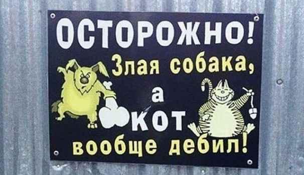 В Крыму установлен перечень пород собак, требующих особых условий содержания