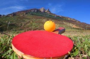 В Алуште пройдёт международный турнир по теннису «Кубок Черного моря»