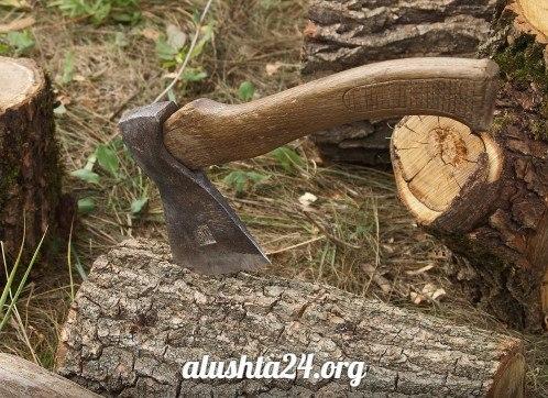 В Алуште незаконно вырубили 159 деревьев