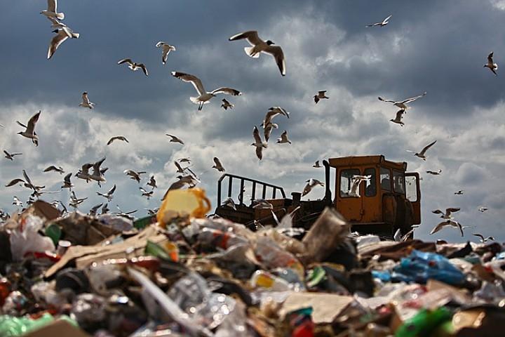 Отличие мусора Ялты от мусора Алушты РФ