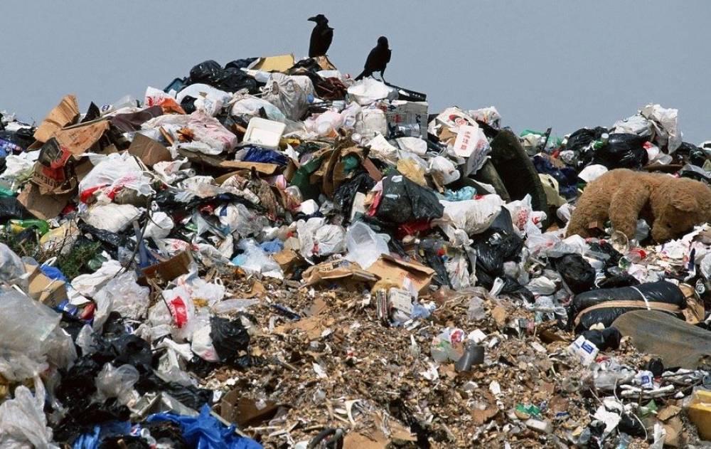 Закрытие алуштинской свалки произойдет в июле, а мусороперерабатывающий завод на территории муниципалитета исключен
