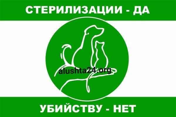 В Алуште будет произведена работа по отлову и стерилизации бездомных собак