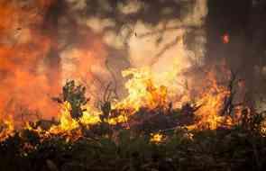 Высокая пожарная опасность
