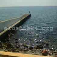 Пена и пленка на пляжах восточной набережной от Невы по Магнолию