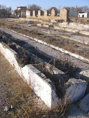 ферма 2Коммунист Крыма 079.jpg